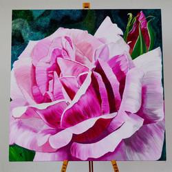 Rosa Rose | lischiKUNST
