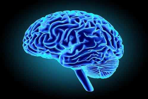 Cognitivité