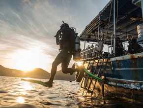 Work and Travel: What's the salary for a scuba diving instructor around the world?
