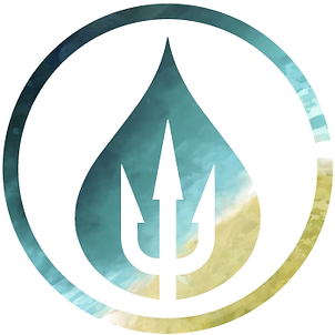 Salty warrior logo
