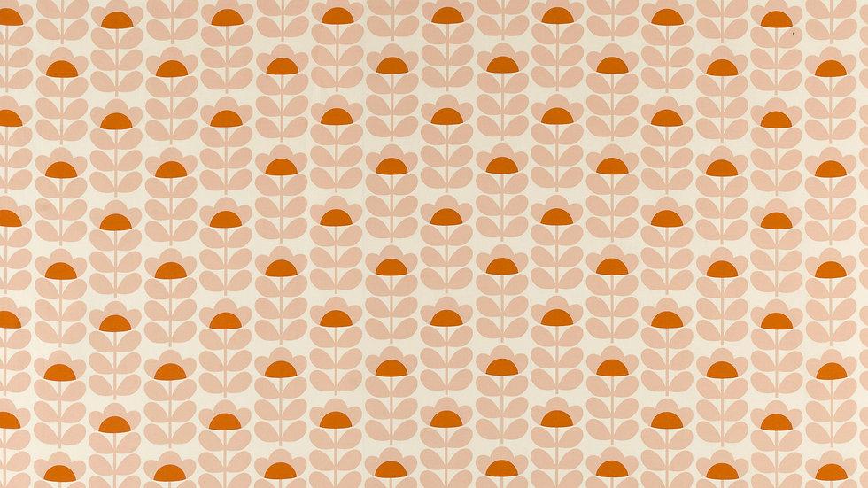 Sweetpea - Orange