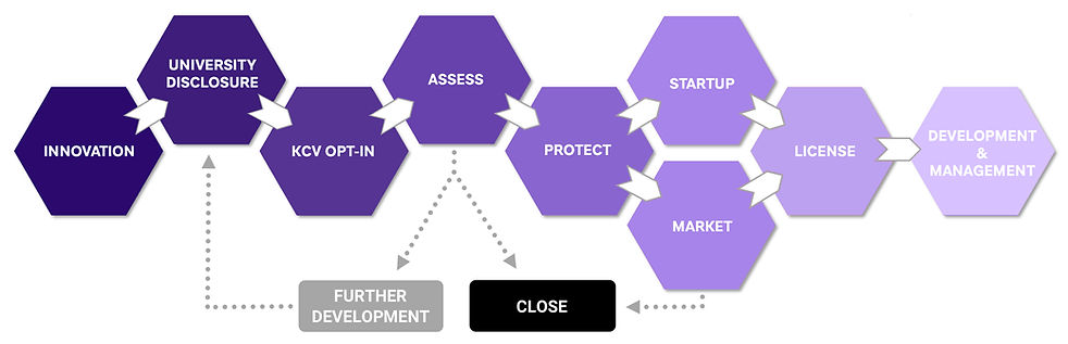 Commercialization-Flowchart(purple).jpg