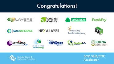 KSEF Selected Companies.png