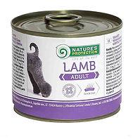 Adult Lamb.jpg