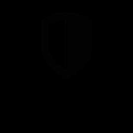 система защиты.png