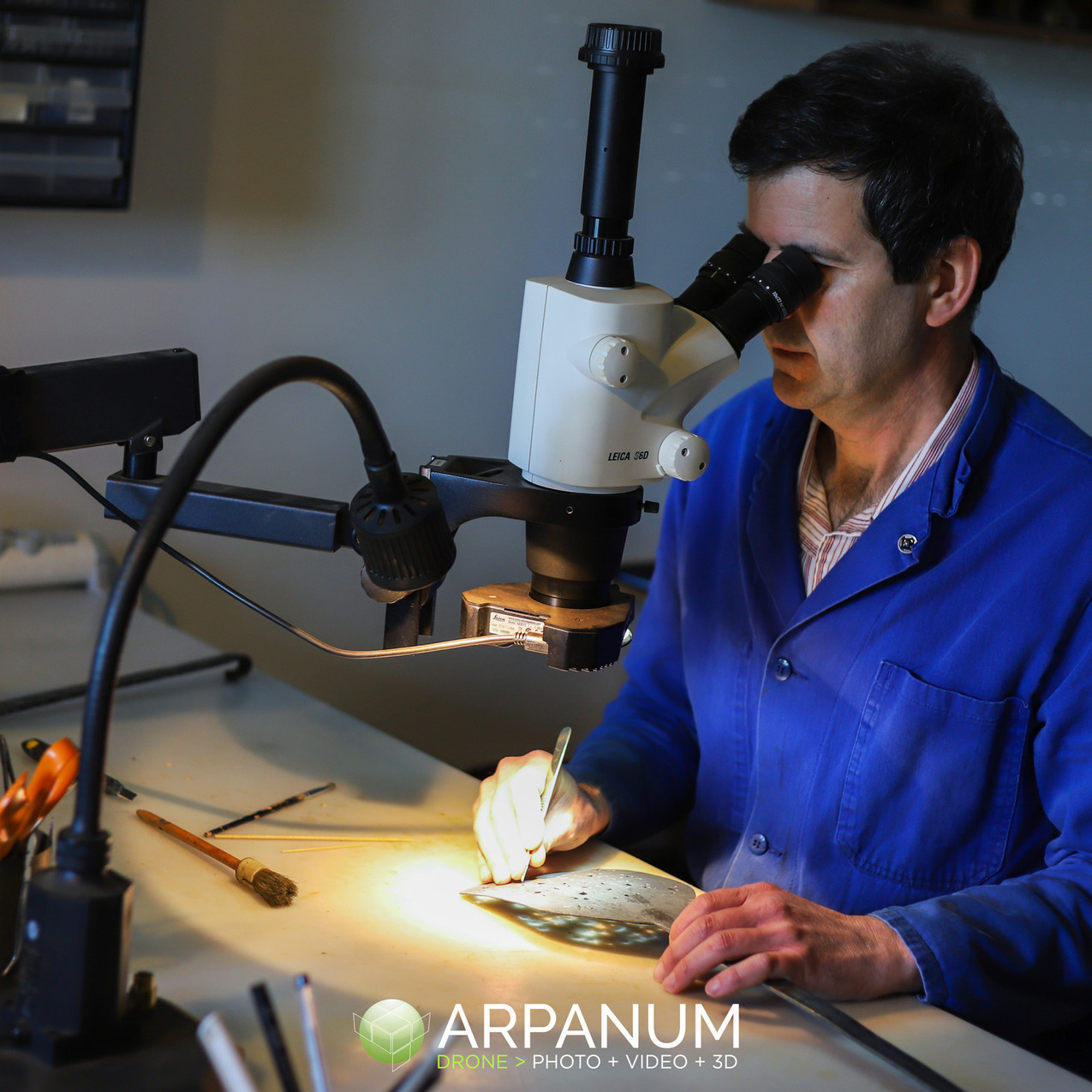 Bruno Bell - Arpanum
