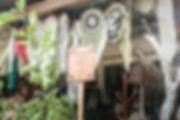 IMG_3632-2 (1).jpg