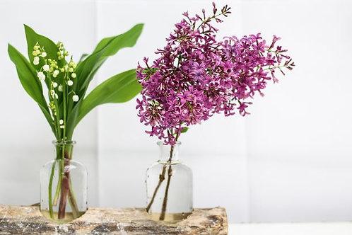 Lilac & Lilies