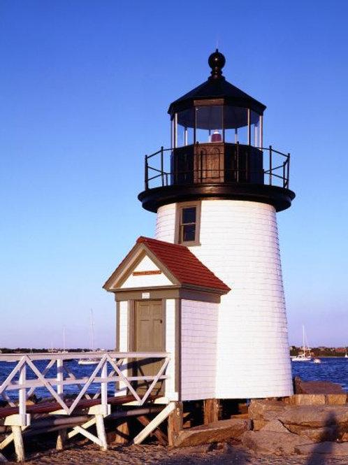 Nantucket Briar