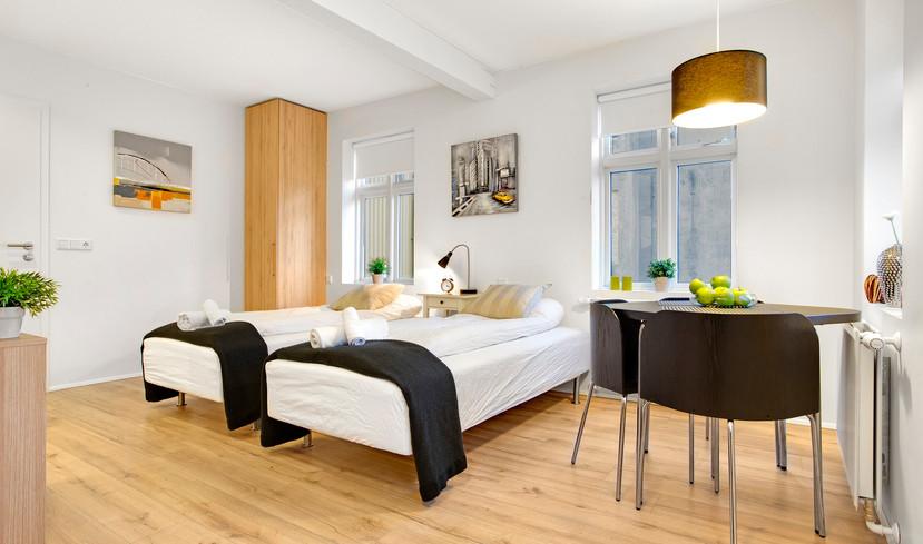 Studio apartment (variant)