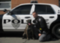 Southen Tier Police Canine Association