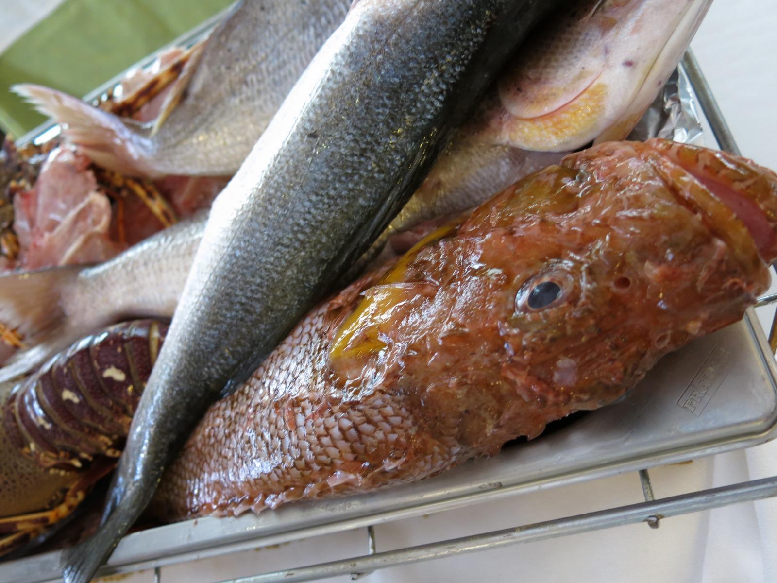 Peix fresc La Barretina