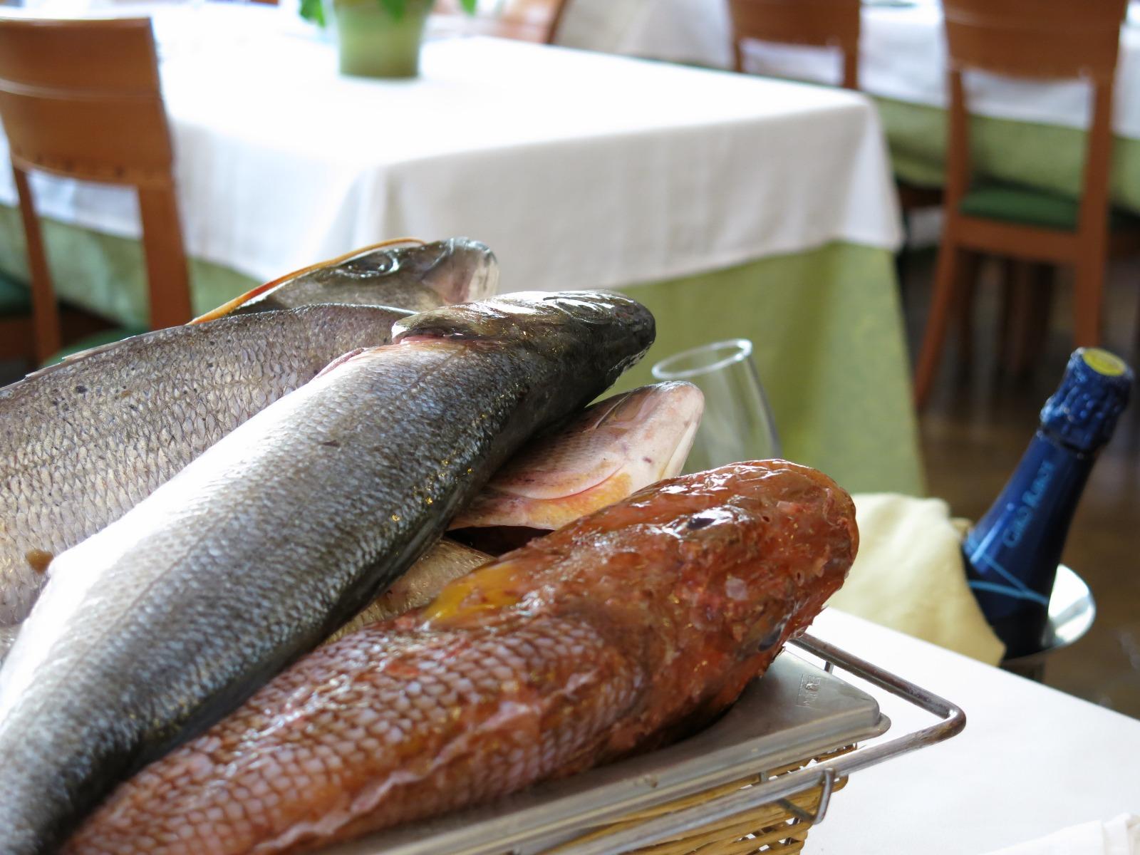 Peix Fresc