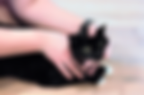 in stride feline animal adjustment 1.png