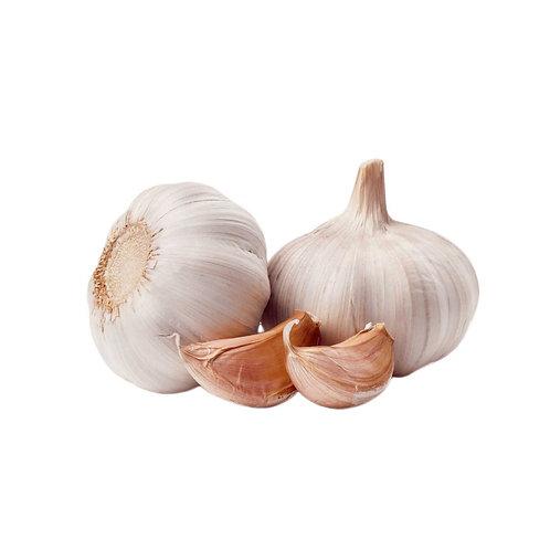 Garlic /Case