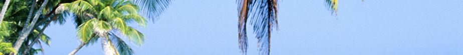 2019 travel guides, travel books for 2019, 2019 barcelona guide, 2019 paris guide, 2019 cruising guide, 2019 madrid guide, 2019 prague travel guide, 2019 paris travel guide, 2019 tokyo travel guide, best travel guides for 2019, 2019 lonely planet travel guides