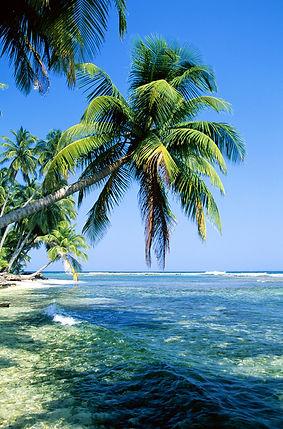Рейтин пляжей мира