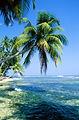 旅行記 旅好き ハワイ 海外旅行 国内旅行