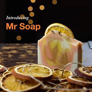 Introducing Mr Soap Insta.jpg