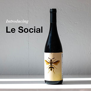 Introducing Le Social Insta.jpg