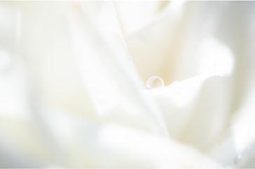whitemusk_image.jpg