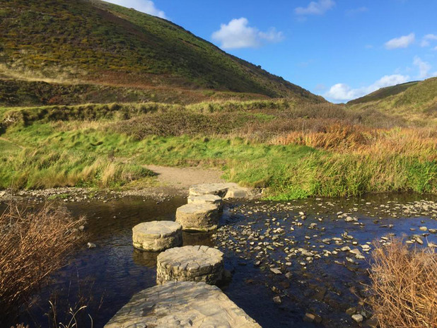 Stepping stones at Welcombe Mouth