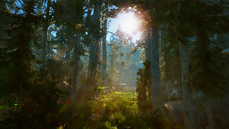 TheForest_Screenshot.png
