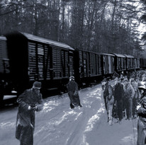 Film still from Coming Home Alive