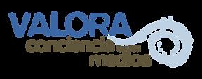 Logo Valora.png