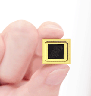 xinfoo sensor