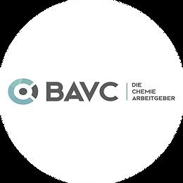 BAVC logo-01.png