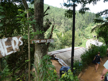 Day eleven: Explore Sri Lankan wildlife at Yala National Park