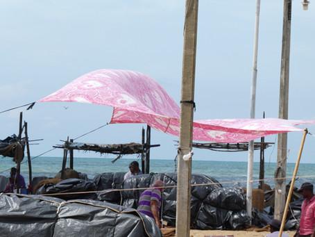 Day one: Negombo coastal city