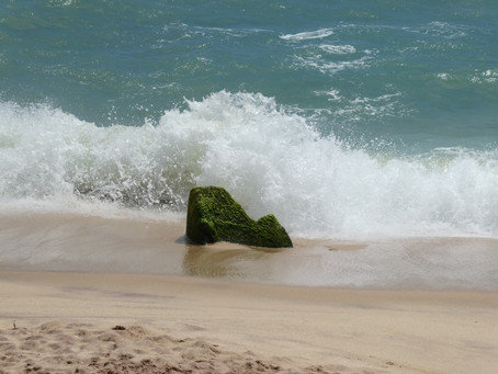 Day twelve: It's time to explore the southern beaches