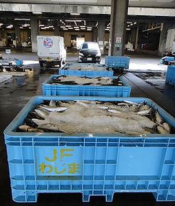 fish_market_02.jpg