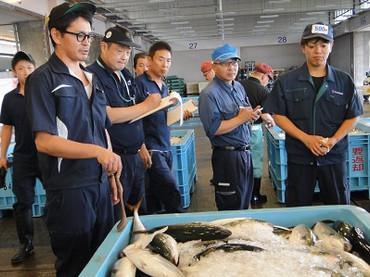 fish_market_03.jpg