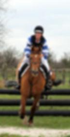 Sports Horses, Gemini Sports Horses