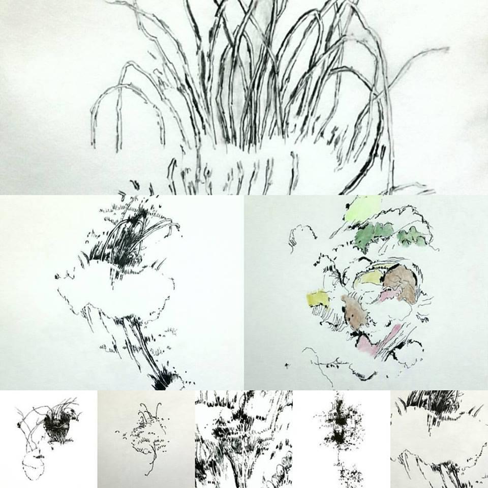 Details from drawings in progress