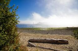 Ferry Fog