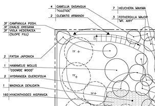 example-planting-plan.jpg
