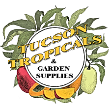 TUCSON-TROPICALS-1300PX.png