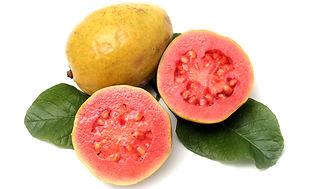 guava Beaumont.jpg