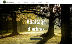 Abattage d'arbres Nicolas Mélot