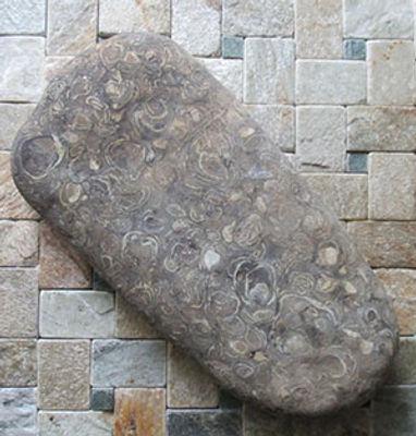 Winkle-stone.jpg