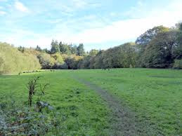 Brickfield Meadow