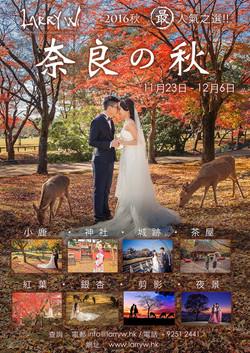 2018 Kansai Red Leave