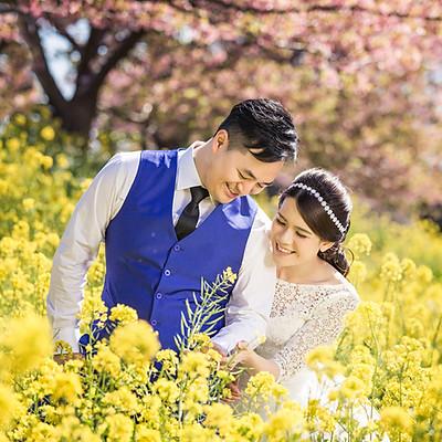 Kawazu Sakura 河津櫻