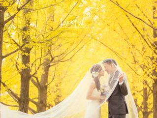 韓國紅葉 Korea Autumn