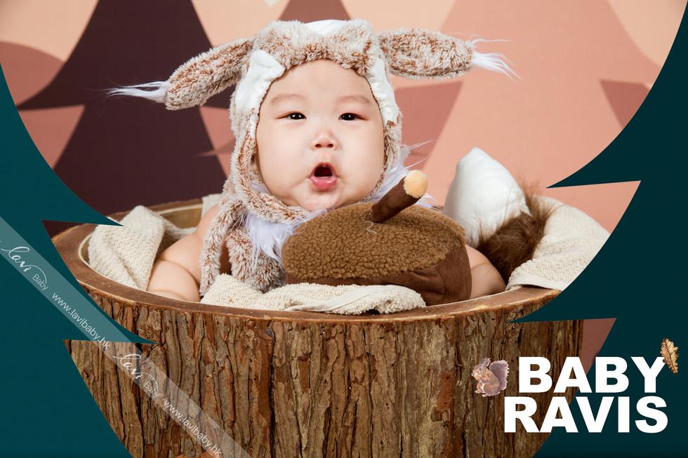 叢林動物寶寶-Ravis