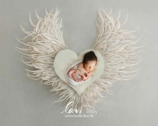 20200702NB-Heart wings white.jpg
